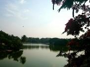 ಈ ಋತುವುನಲ್ಲಿ ಭೇಟಿ ನೀಡಬಹುದಾದ ಬೆಂಗಳೂರಿನ ಟಾಪ್ 5 ಸರೋವರಗಳು