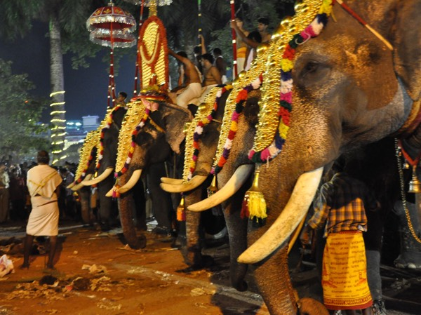 Grand Festivals Celebrated In South India