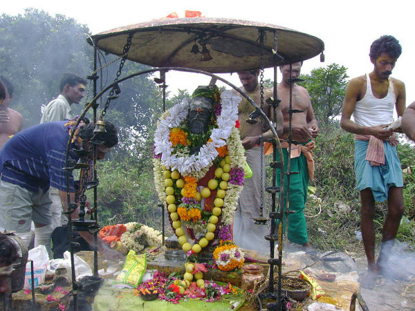 ಅಗಸ್ತ್ಯಋಷಿಯ ಅಗಸ್ತ್ಯಮಲೆಗೆ ಟ್ರಕ್ಕಿಂಗ್ ಹೋಗೋಣ್ವಾ...
