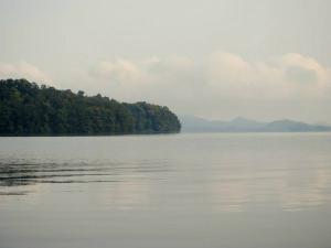 Bhadra Reservoir The Wild Beauty