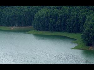 Idukki Wonder Green Land