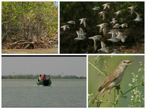 Krishna Wildlife Sanctuary