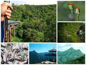 Sakleshpur Hub Thrilling Trekking Trails