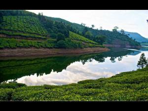 Meghamalai The Hidden Misty Mountains