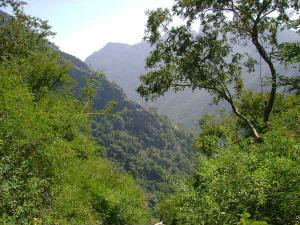 Kolli Hills Pure Clear Gift From Nature