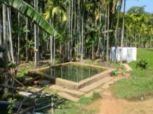 Guli Guli Shankara Powerful Magical Pond Shiva