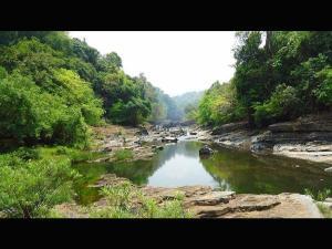 Beautiful Nature Views Along The Path Mandovi River