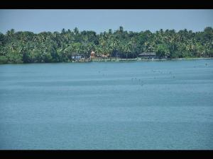 Ashtamudi Lake Lake Made Long Boat Rides