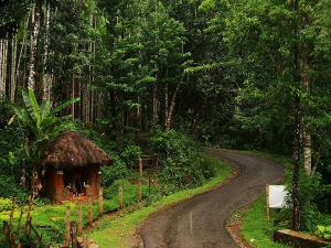 A Winter Trip From Bangalore Agumbe