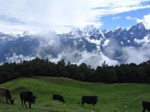 Auli The Hidden Paradise Uttarakhand