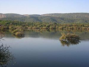 Sariska Forest An Amazing Hunter Land
