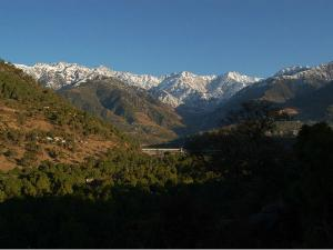Get Know Palampur The Tea Capital North India