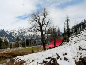 Road Trip From Chandigarh Manali
