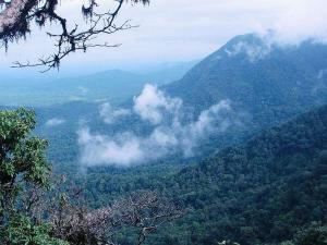 Waterfalls Agumbe