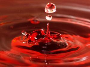 Red Rain Idukki Kerala