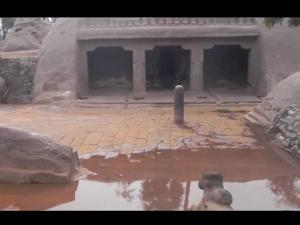 ಭಾರತದಲ್ಲಿನ ಸುಮಾರು 10,000 ವರ್ಷಗಳ ಏಕೈಕ ಪುರಾತನವಾದ ದೇವಾಲಯ ಎಲ್ಲಿದೆ ಗೊತ್ತ?