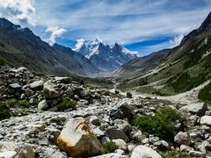 Experience The Alpine Wilderness At Gangotri National Park