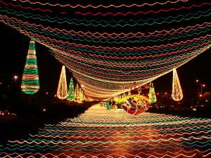 Why Cochin Carnival Is The Place Be On New Year S Eve