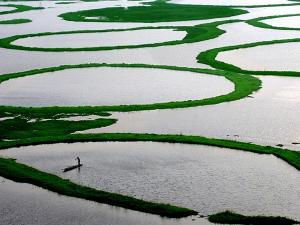 Exploring The World S Only Floating National Park At Loktak Lake