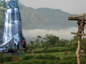 Hill Stations To Visit In Kemmannugundi Chikkamagaluru
