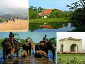 Reasons Why One Must Visit Coorg