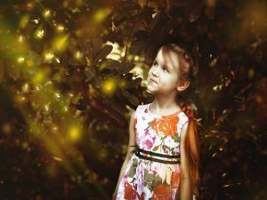 Fireflies Festival Maharashtra 2018 Dates