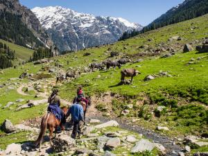 Things To Do In Chatpal South Kashmir