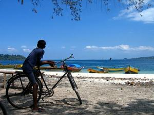 Attractions Things To Do In Havelock Island Andaman And Nicobar