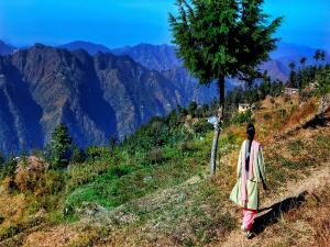 All You Want To Know About Shimla