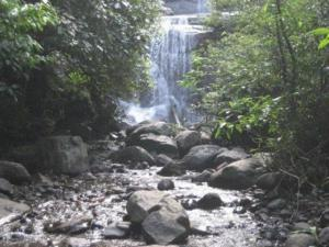 Nilakandi Falls Coorg Attractions How Reach