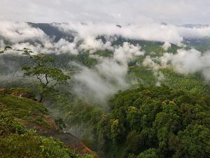 Jenukallu Gudda Trekking Places Sakleshpur