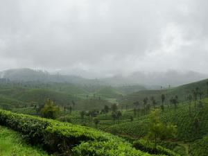 Valparai Tamilnadu Attractions How Reach