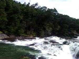 Attractions Kamraj Sagar Dam Ooty