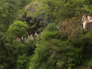 Kalpeshwar Temple Uttarakhand History Timings How Reach
