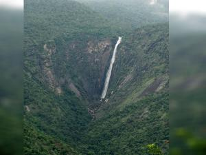 Thalaiyar Falls Rat Tail Falls Kodaikanal Attractions Ho
