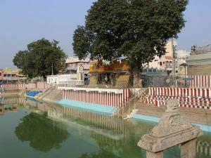 Tiruchanur Padmavati Temple History Attractions And How To