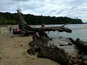 Chidiya Tapu Port Blair Attractions And How To Reach