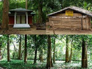 Nilambur In Kerala Attractions And How To Reach