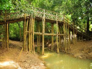 Kuruva Island Wayanad Attractions And How To Reach