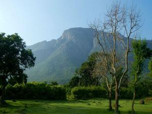 Kotagiri Hills In Tamil Nadu Attractions And How To Reach