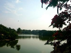 Popular Lakes In Bangalore For Nature Lovers
