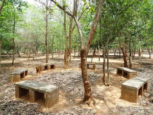 Evergreen Kambalakonda National Park