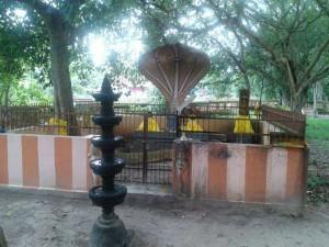The Powerful Nagaraja Swamy Temple Vetticode