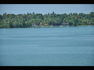 Ashtamudi Lake Lake Made Long Boat Rides