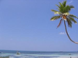 Lakshadweep The Coral Capital India
