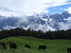 Auli The Hidden Paradise Uttarakhand