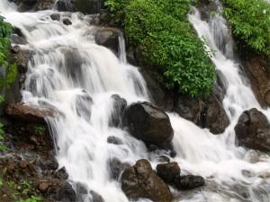 Experience Magical Monsoon At Amboli