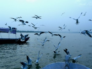 Top Places Visit Allahabad