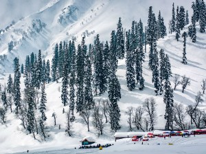 Attend The Valley Weekend At Kashmir This Winter