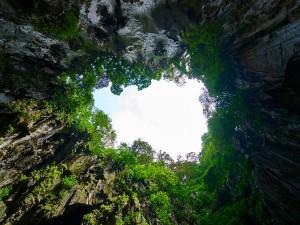 Exploring Meghalaya S Garden Caves